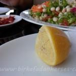 limon çekirdeği için pratik çözüm